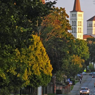 Εθελοντική δράση ESC 01/09/2020-01/09/2021 Λιθουανία