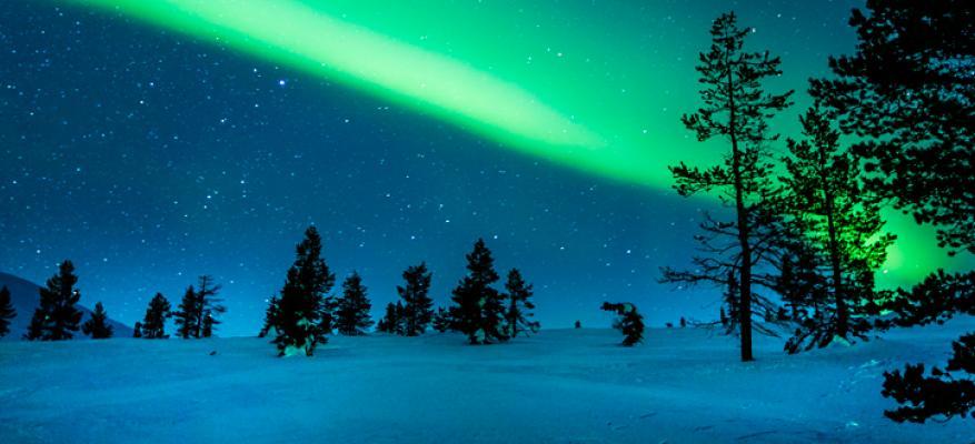 Εθελοντικό Πρόγραμμα Sustainability Rules Φιλανδία Νοέμβριος 2019, 6 μήνες