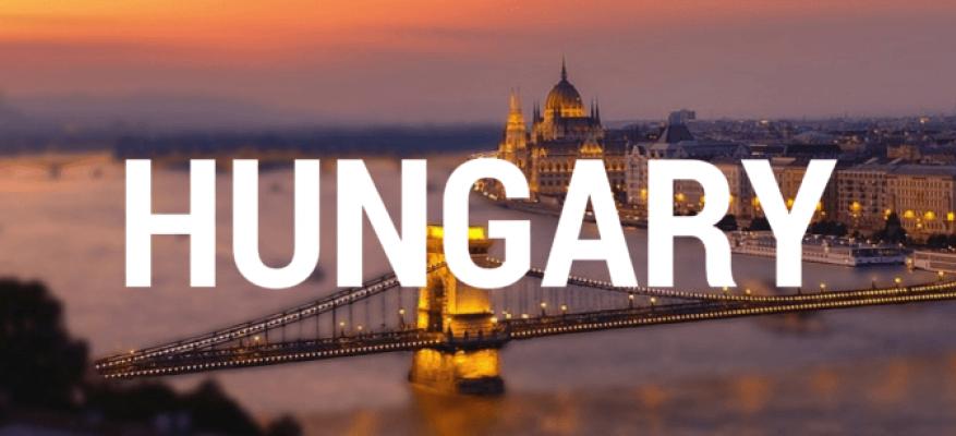 Εθελοντικό Πρόγραμμα Piece of My Heart Αύγουστος 2019-Ιούλιος 2020 Ουγγαρία